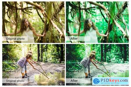 Green Forest Presets 5689709